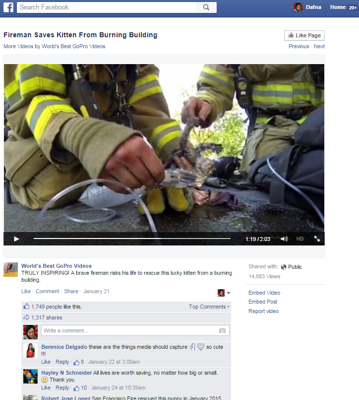 GoPro Fireman Saves Kitten